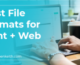 best file formats for web and print, person working at a computer, blue gradient on top